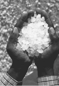 Salt crystals. (CORBIS CORPORATION)