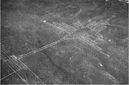 Aerial view of a Nazca line depicting a hummingbird. (CORBIS CORPORATION)